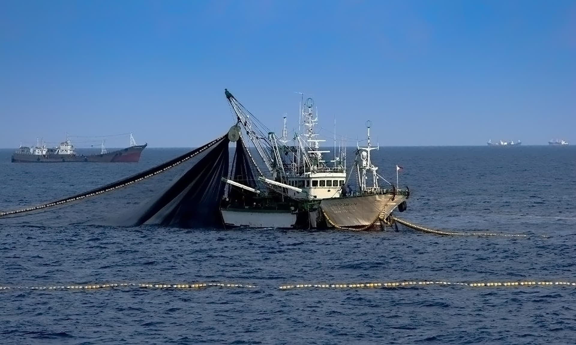Purse Seine Nets, Fish Finding Equipment, Fishing Gear & Trawls | Dan Sea